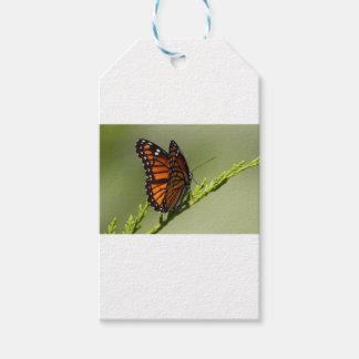 Étiquettes-cadeau Papillon de monarque magnifique sur l'arrière -