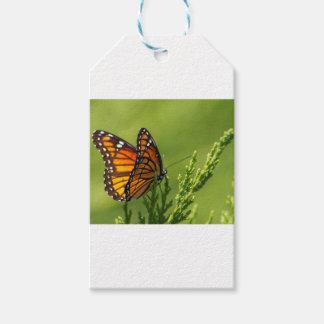 Étiquettes-cadeau Papillon de monarque orange et noir