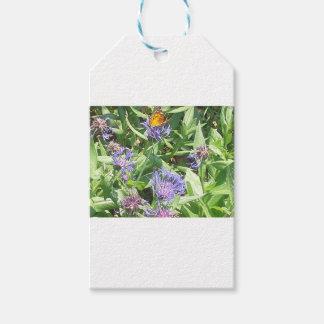 Étiquettes-cadeau Papillon sur Coneflower pourpre