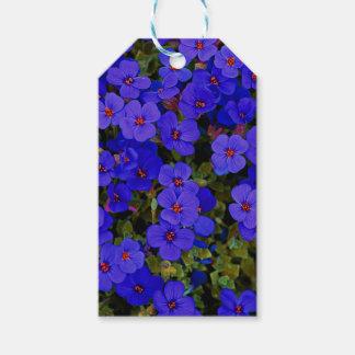 Étiquettes-cadeau Petites fleurs bleues
