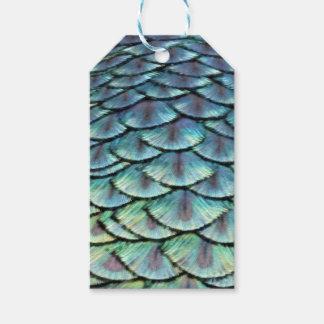 Étiquettes-cadeau Plumes de queue de paon