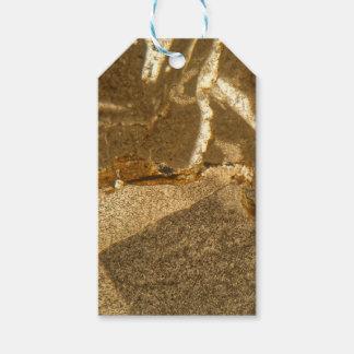 Étiquettes-cadeau Section mince de carbonate triassique sous le