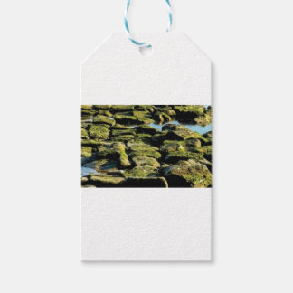 Étiquettes-cadeau texture verte de bloc
