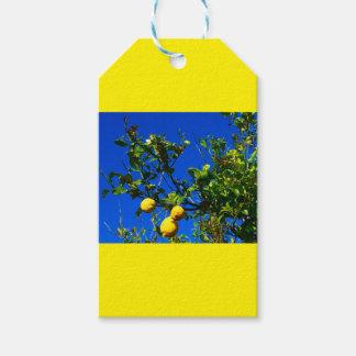 Étiquettes-cadeau Trois citrons siciliens