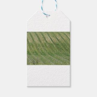 Étiquettes-cadeau Vue pittoresque de flanc de coteau de roulement