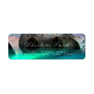 Étiquettes de adresse bleus aquatiques de retour