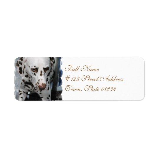 Étiquettes de adresse dalmatiens mignons