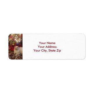 Étiquettes de adresse de Noël