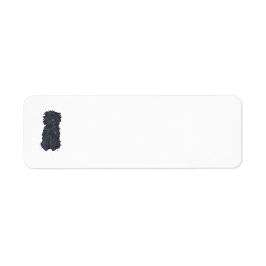 Étiquettes de adresse de retour d'Affenpinscher