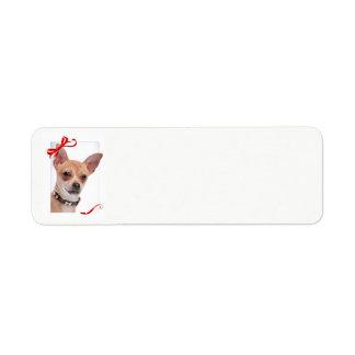 Étiquettes de adresse de retour de Noël de chiwawa