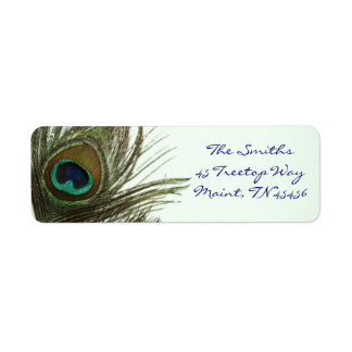Étiquettes de adresse de retour de plume de paon