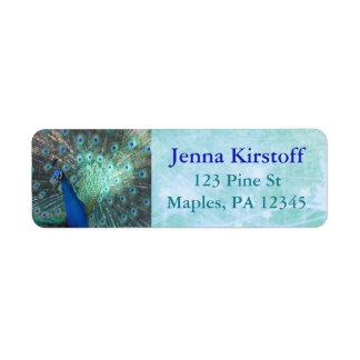Étiquettes de adresse de retour de turquoise de