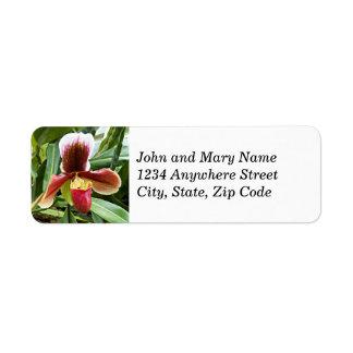 Étiquettes de adresse de retour floraux d'orchidée