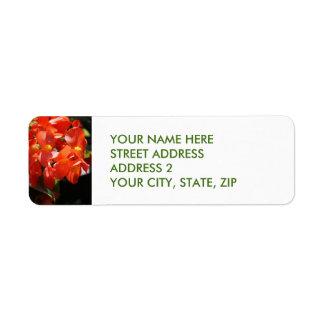 Étiquettes de adresse rouges de Quatre-Line de