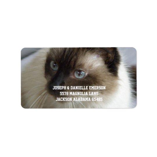 Étiquettes de adresse siamois de Kitty