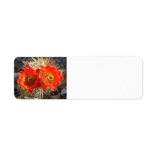 Étiquettes de retour de fleur de Cacus