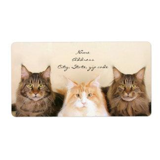 Étiquettes d'expédition de chats de ragondin du Ma