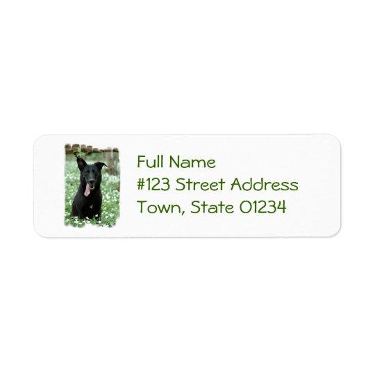 Étiquettes postales noires de berger