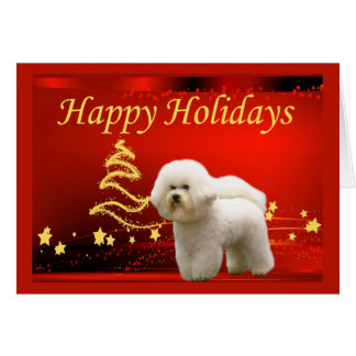 Étoiles de carte de Noël de Bichon Frise