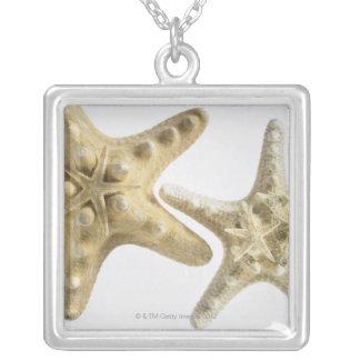 Étoiles de mer de sucre sur une étoile de mer pendentif carré
