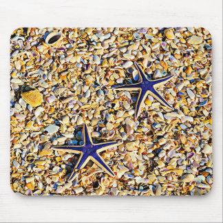 Étoiles de mer et tapis de souris de coquillages