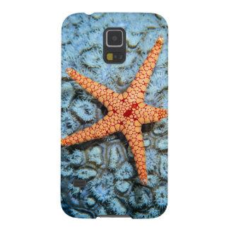 Étoiles de mer sur un corail avec Polips Coque Pour Samsung Galaxy S5