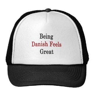 Être danois se sent grand casquettes