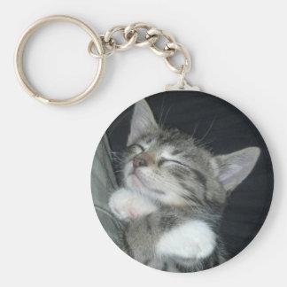 Étreintes de chaton porte-clef