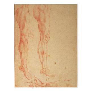 Études des jambes et des bras carte postale