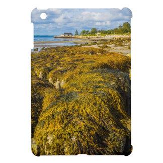 Étui iPad Mini Algue de plage