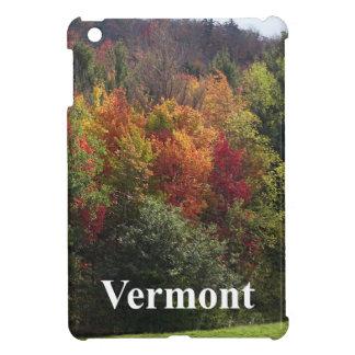 Étui iPad Mini Couleur du Vermont