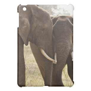 Étui iPad Mini Deux éléphants de Bush d'Africain (Loxodonta