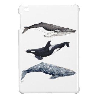 Étui iPad Mini Orque, baleine bossue et baleine gris