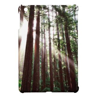 Étui iPad Mini Parc national de séquoias