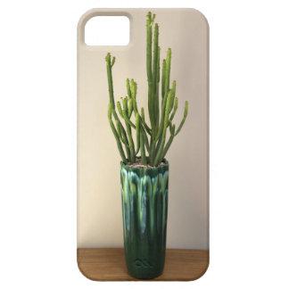 """Étui iPhone 5 """"Caisse succulente verte de téléphone par des"""
