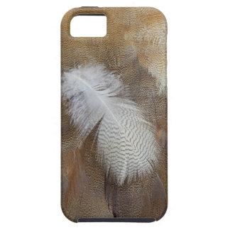Étui iPhone 5 D'oie de plume toujours la vie