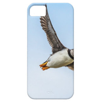 Étui iPhone 5 Plume de mouche de faune de vol de mer d'oiseau de