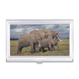 Étui Pour Cartes De Visite Éléphant africain de bébé avec la famille
