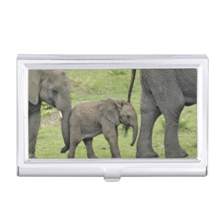 Étui Pour Cartes De Visite Éléphant africain femelle avec le bébé, Loxodonta