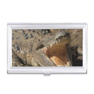 Étui Pour Cartes De Visite Ferme d'alligator