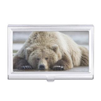 Étui Pour Cartes De Visite Les Etats-Unis, Alaska, parc national de Katmai,