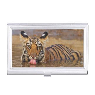Étui Pour Cartes De Visite Petit animal de tigre royal de Bengale, eau