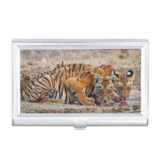 Étui Pour Cartes De Visite Petits animaux de tigre royaux de Bengale au point