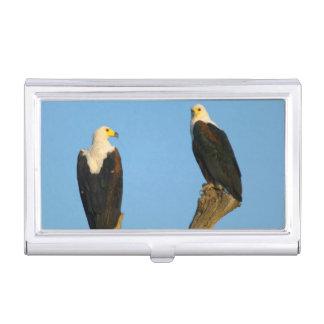 Étui Pour Cartes De Visite Poissons Eagle africains (Haliaeetus Vocifer)