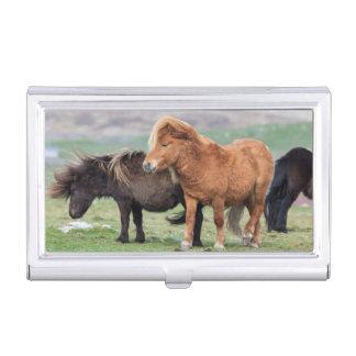 Étui Pour Cartes De Visite Poney de Shetland, Îles Shetland, Ecosse 2