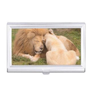 Étui Pour Cartes De Visite Portrait du mâle et de la femelle blancs de lion