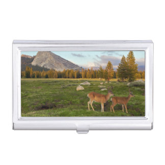 Étui Pour Cartes De Visite Pré de Tuolumne, Yosemite