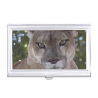 Étui Pour Cartes De Visite Puma