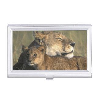 Étui Pour Cartes De Visite Réservation de jeu du Kenya, Mara de masai, lionne