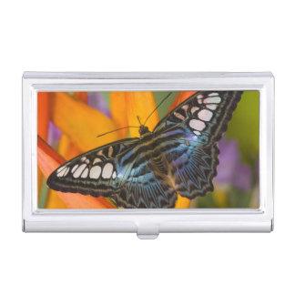 Étui Pour Cartes De Visite Sammamish, papillon tropical 24 de Washington